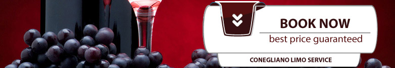 Ask informations or book now your Valpolicella Wine Tour