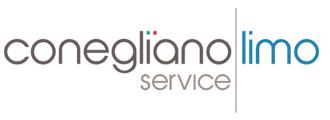 Noleggio auto con conducente a Venezia Conegliano Limo Service