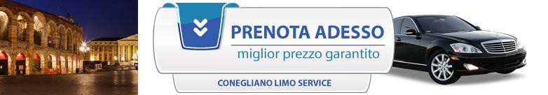 Prenota o chiedi informazioni sul noleggio auto con conducente a Verona